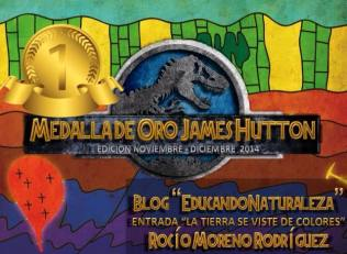 Medalla de Oro X Carnaval de Geología